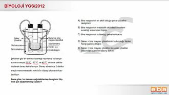 2012 YGS Biyoloji Solunumu Etkileyen Faktörler izle