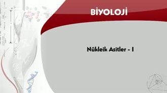 Nükleik Asitler - 1 izle