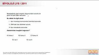 2011 LYS Biyoloji Kalıtım izle