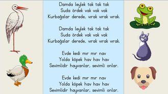 1.Sınıf Hayvanlar - Damda Leylek Tak Tak Tak - Şarkısı Ezberleme Söyleme izle