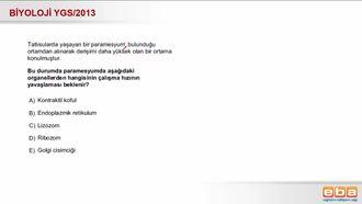 2013 YGS Biyoloji Hücre Organelleri izle