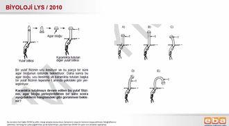 2010 LYS Biyoloji Bitkisel Hareketler izle