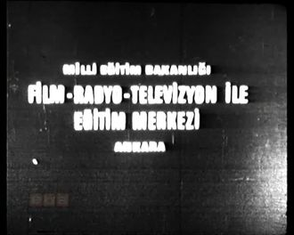 Kaza Geliyorum Demez (1977) izle