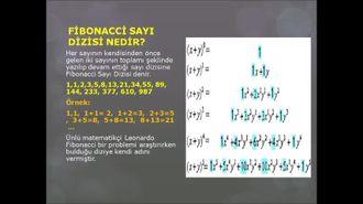Fibonacci Sayı Dizisi ve Altın Oran izle