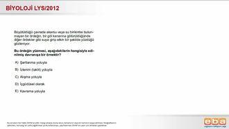 2012 LYS Biyoloji Davranış izle