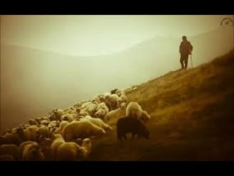 Bingöl Çobanları Şiiri izle