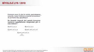 2010 LYS Biyoloji Mayoz Bölünme izle