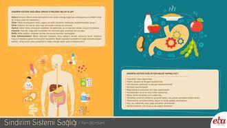 Sindirim sistemi sağlığı için yapılması gerekenler ve sindirim sistemi sağlığına dikkat edilmediğinde meydana gelecek rahatsızlıkları anlatan infografik çalışması.