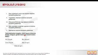 2012 LYS Biyoloji Sınıflandırma (Akrabalık Tayini) izle