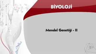 Mendel Genetiği - 2 izle