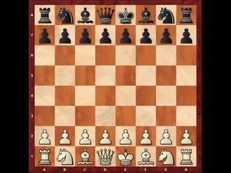 Satranç tahtasının konumu, taşların dizilişleri izle