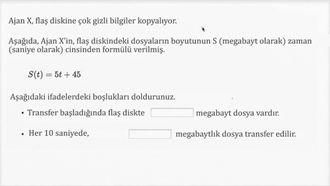 Doğrusal Formülleri Yorumlamak: Örnek 2 izle