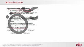 Mendel Genetiği (2017 LYS - BİYOLOJİ) izle