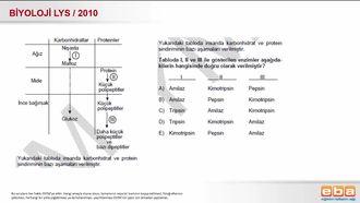 2010 LYS Biyoloji Sindirim Sistemi izle