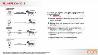 2012 LYS Klasik Koşullanma Yoluyla Öğrenme izle