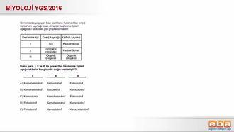 2016 YGS Beslenme Şekilleri izle
