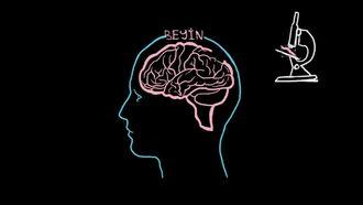 Alzheimer Hastalığı: Plaklar ve Yumaklar izle