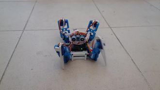 Örümcek Robot izle