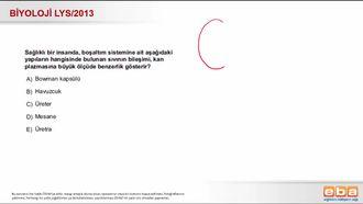 2013 LYS Biyoloji Boşaltım Sistemi izle