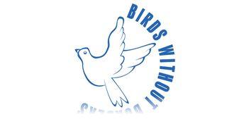Birds Without Borders Slovenya İle Çevrimiçi Görüşmemiz izle