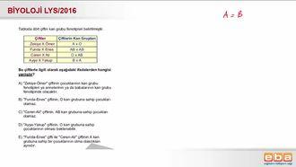 2016 LYS Biyoloji Kan Grubu Kalıtımı izle