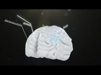 Beynimizle Okumak ve Okuma Teknikleri - 1 izle