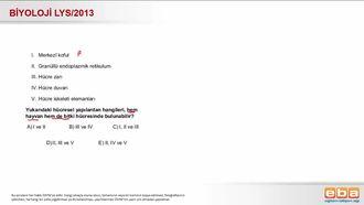 2013 LYS Biyoloji Hücrelerin Karşılaştırılması izle