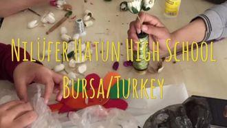 eTwinnin Bound Project Nilüferhatun Mesleki Teknik  Anadolu Lisesi izle