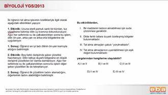 2013 YGS Biyoloji Duyu Organları izle