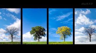 Mevsimler Şarkısı izle