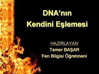 DNA'nın Kendini Eşlemesi izle