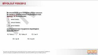 2012 YGS Biyoloji Besin Zinciri izle