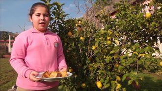 Yerel Gıdalar, Sağlıklı Yaşam izle