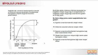 2012 LYS Biyoloji Solunum Sistemi ve Aktiviteler izle