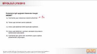 2013 LYS Biyoloji Proteinler izle