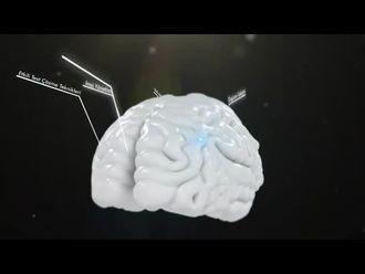 Beynimizle Okumak ve Okuma Teknikleri - 2 izle