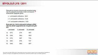 2011 LYS Biyoloji Protein Sentezi izle