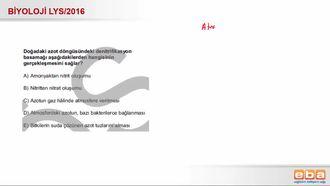 2016 LYS Biyoloji Azot Döngüsü izle
