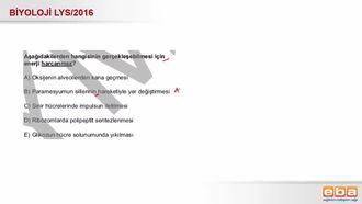 2016 LYS Biyoloji Madde Taşınma Şekilleri izle