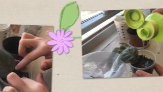 Sınıfımız çiçek açtı izle