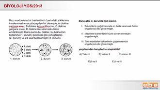 2013 YGS Biyoloji Bakterilerin Sınıflandırılması izle