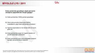 2011 LYS Biyoloji Krebs Çemberi izle