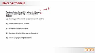 2013 YGS Biyoloji Ötrofikasyon izle