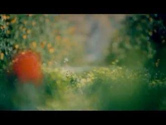 Expo 2016 Antalya Tanıtım Filmi izle